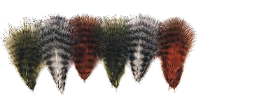 Grizzly Marabou